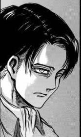 Levi is so incredibly done with your bullshit.